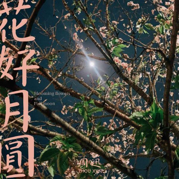 周迅新单曲《花好月圆》上线 上一部言情有千种风格