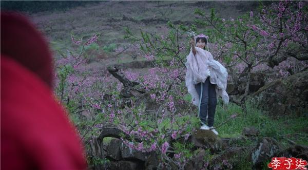 """探寻新时代的""""桃花源"""",就在李子柒的视频之中"""