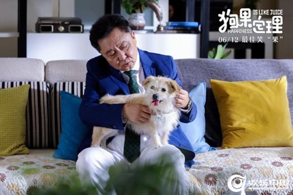 《狗果定理》6.12 爆笑上映相声皇后于谦领衔主演再现神级演技