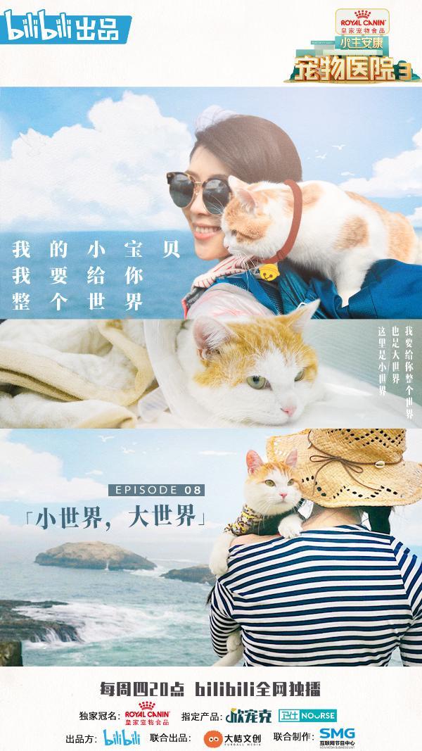 《宠物医院3》温暖收官 主题曲MV首次发布