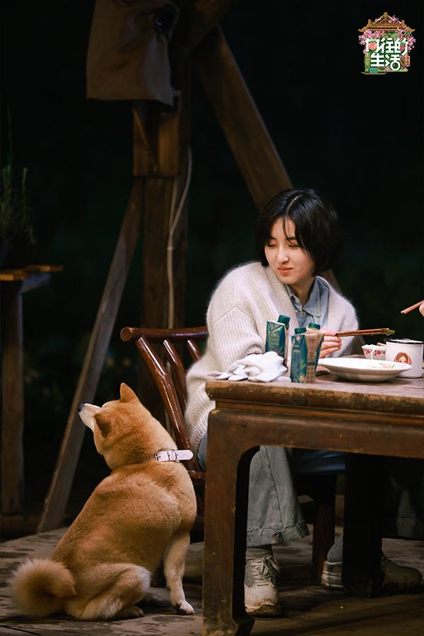 杨紫惊喜做客《向往5》 黄磊尝试铁桶烤鸡