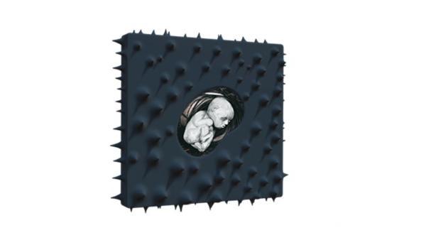 梅卡德尔的另一面赵泰个人专辑《柔软的刺》出版