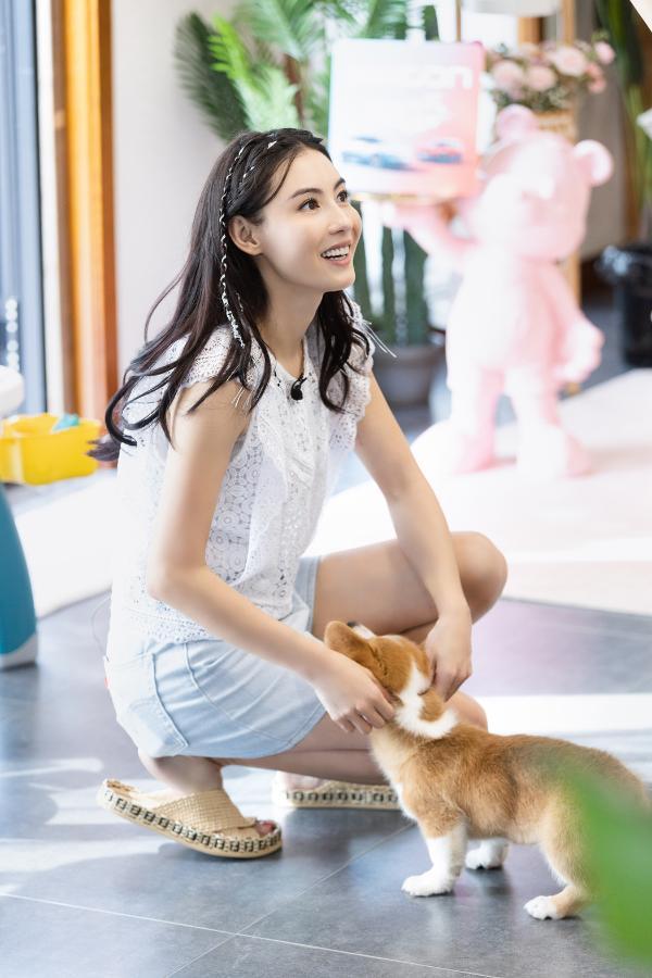 """《阳光姐妹淘》第二季开播 张柏芝被好友赞为""""侠女"""""""
