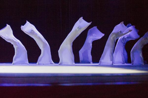 首都师范大学音乐学院原创舞蹈诗《枫叶红了》校园首演