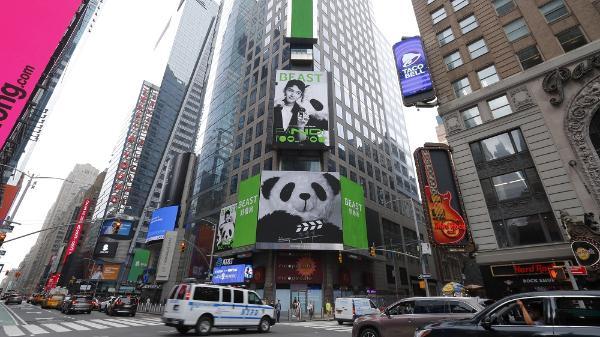 """野兽派掀起""""熊猫热"""" 国际大屏崭露头角"""