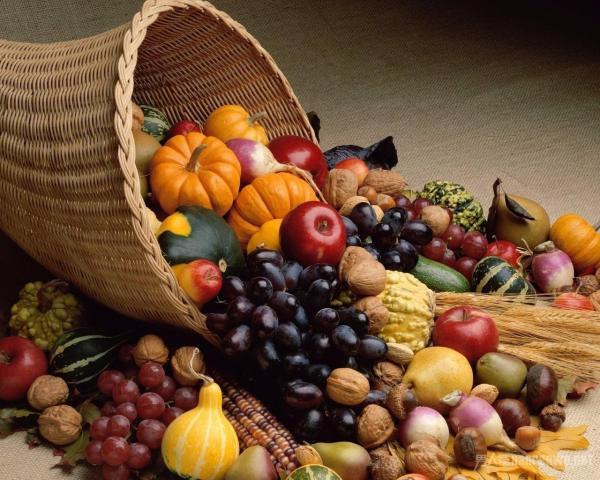 秋季养生 秋季一定要吃这些食物 防暑防寒养生正当时