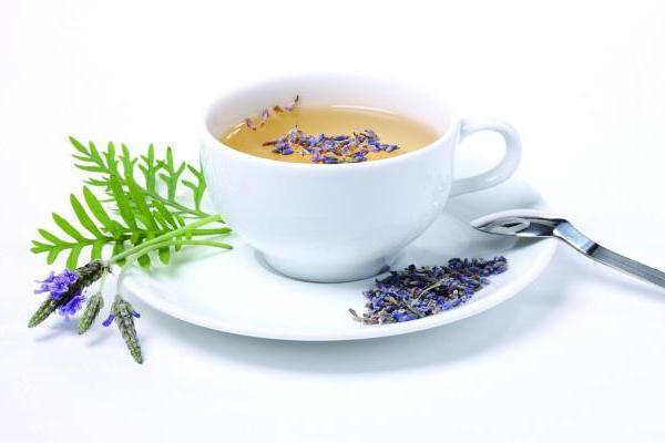 养生茶 养生第一步从喝茶开始 做健康的养生居宝藏青...