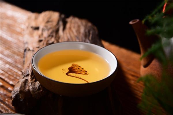 什么茶适合不懂茶的人喝?