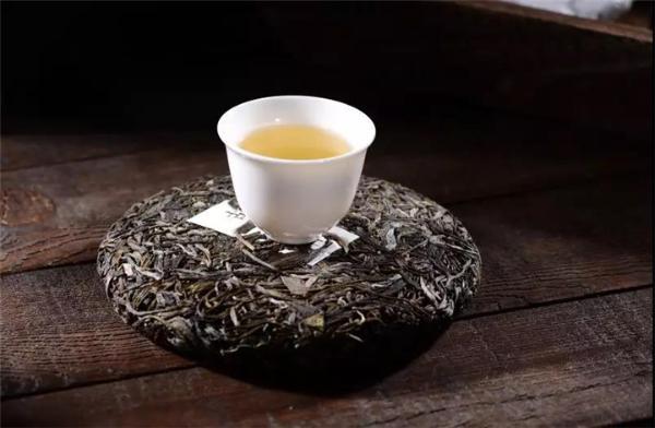 如何喝懂普洱茶?