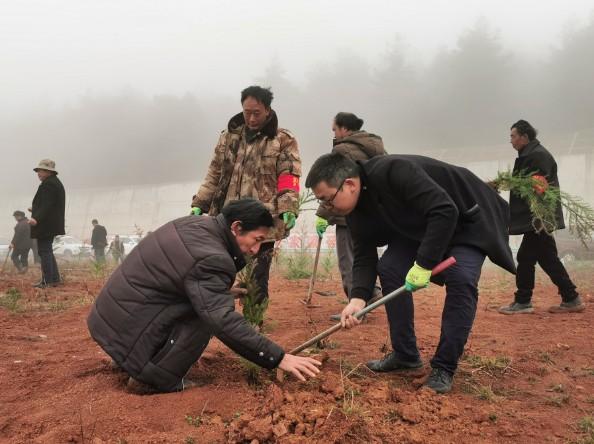 威宁县石门乡2021年春季植树造林活动
