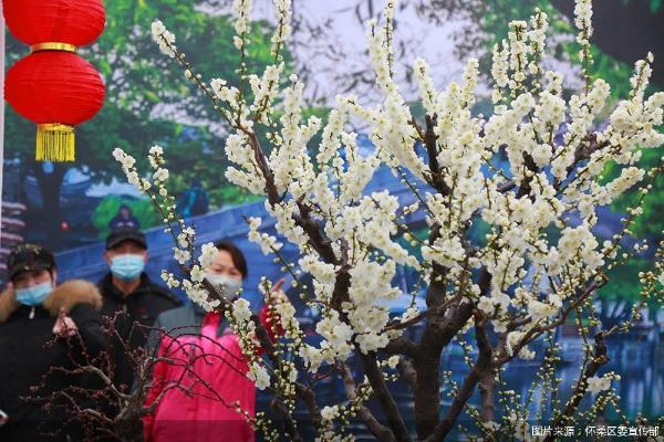 怀柔区第31届群众艺术节开幕 20余项文化活动庆春节