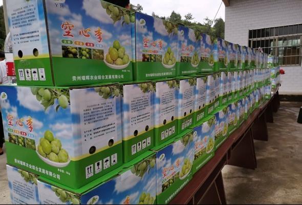 """思南县亭子坝镇:""""小水果""""成为群众致富好产业"""