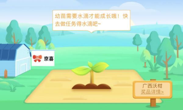 社交电商京喜生鲜品类快速崛起 优质低价水果走进千家万户_驱动中国