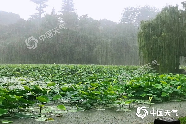 安徽江淮之间入梅 明后天沿江江北有大到暴雨局部大暴雨