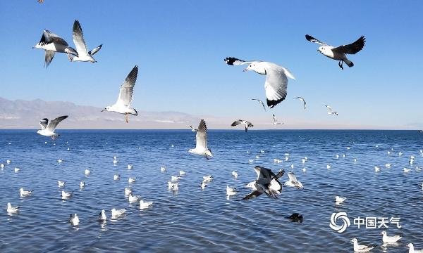 """青海小柴旦湖 镶嵌在群山和荒漠中的""""蓝宝石"""""""