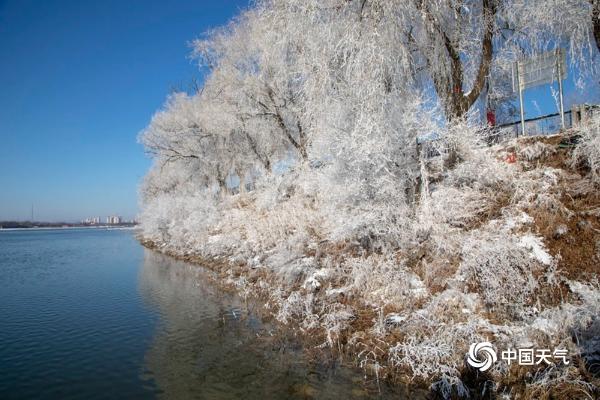 吉林松花江畔现雾凇景观 尽显冬日浪漫