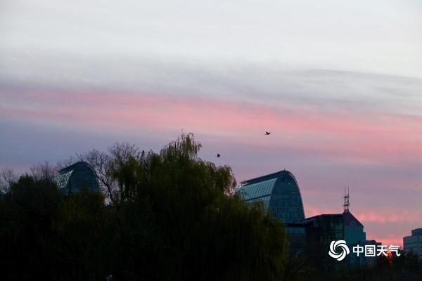 美呆!粉红色朝霞衬映北京天空