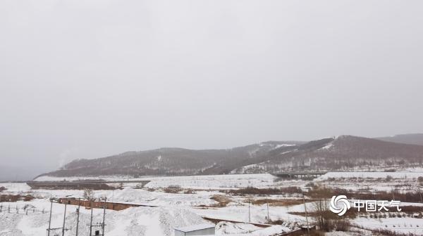 感受冬之气息 内蒙古呼伦贝尔等地雪花飘落