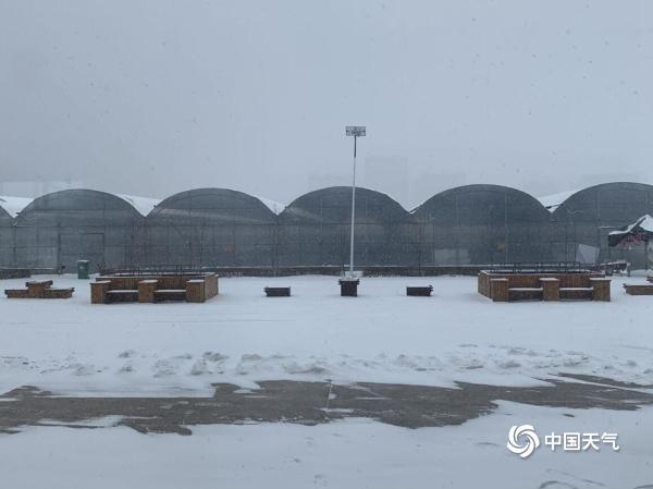 黑龙江佳木斯飘雪 地面一片白茫茫