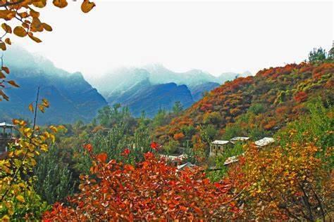 四川秋季观赏红叶新玩法不容错过