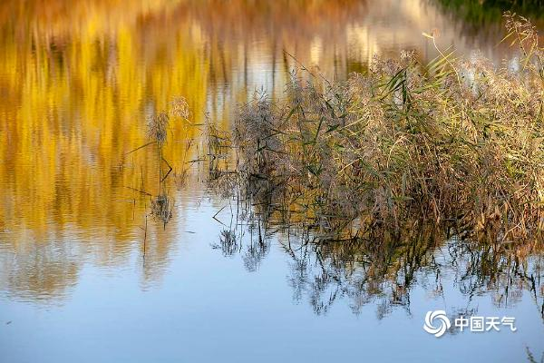 北京西郊景色如画 湖水澄明如镜