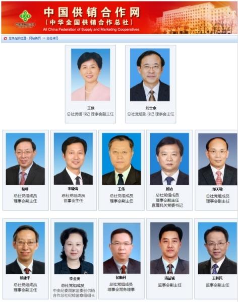 刘士余当选供销总社第六届理事会主任