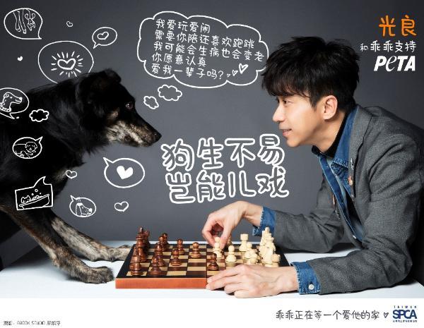 """光良和狗狗在下棋? 原来是PETA公益广告""""狗生不易, 岂能儿戏"""""""