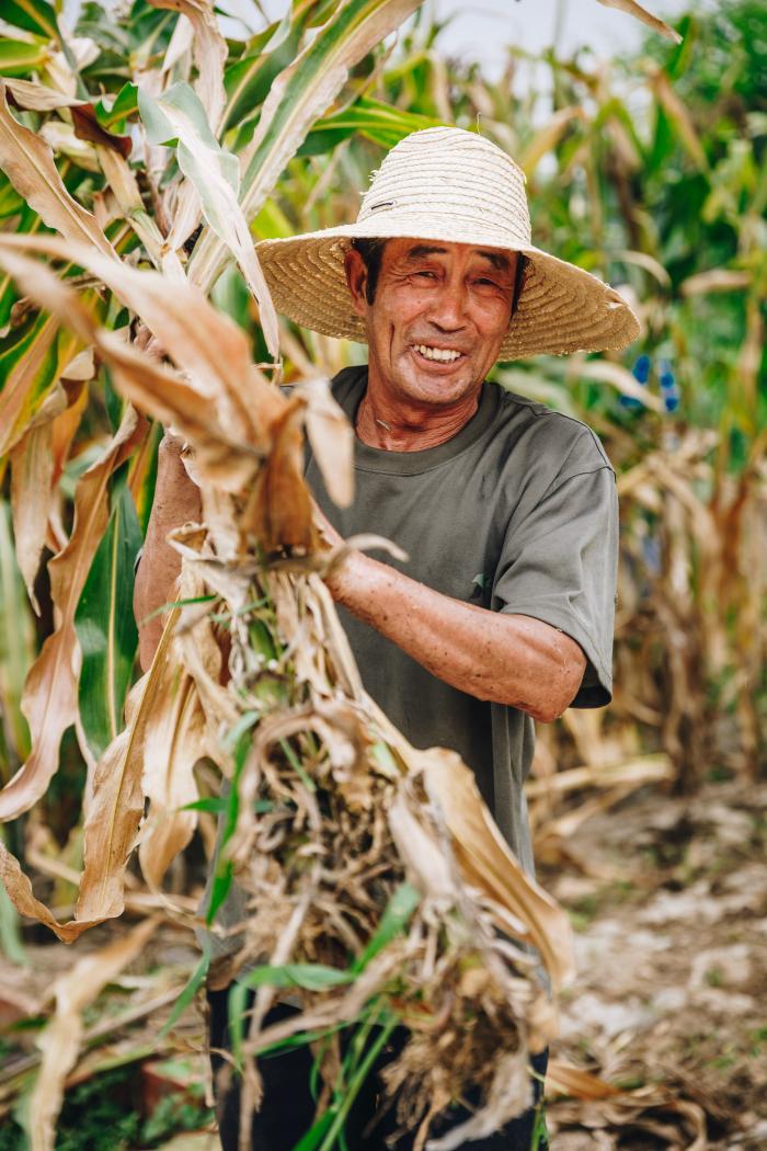 """三年磨砺 中粮智慧农场破茧蝶变 """"农业+""""赋能  打造有温度的农场"""