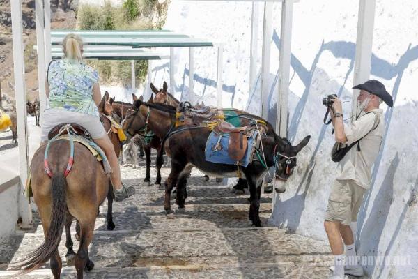 禁止肥胖游客观光 超过200斤还喜欢旅游的游客何必...