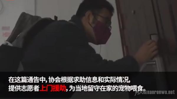 武汉宠物救助已暂停上门喂食 号召同小区进行社区互助