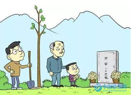 网友热议:清明节扫墓要不要带着孩子?哪些地方不适合宝宝去?