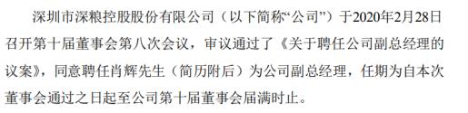 深粮控股聘任肖辉为公司副总经理