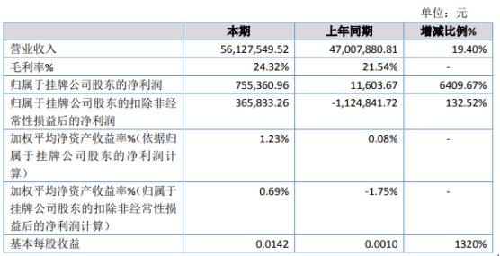 国文股份2019年净利75.54万增长6409.67% 整体毛利率增长