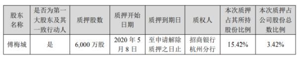 华策影视股东傅梅城质押6000万股 用于融资