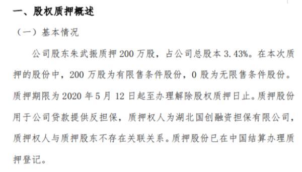 网信安全股东朱武振质押200万股 用于公司贷款提供反担保