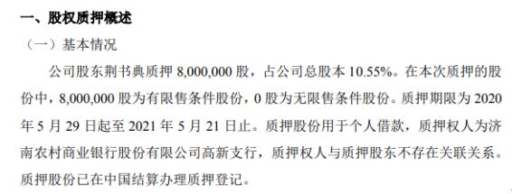 大陆股份股东荆书典质押800万股 用于个人借款