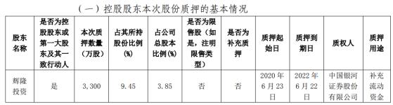 辉隆股份股东辉隆投资质押3300万股 用于补充流动资金