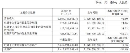 冠农股份2020年上半年净利1.77亿增长74.85% 收入增加