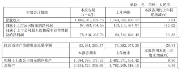乐山电力2020年上半年净利9778.38万下滑13.62% 销售费用同比下滑