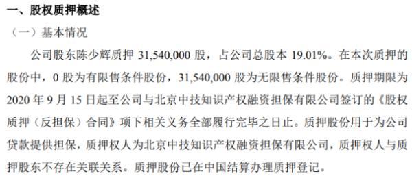 国电康能股东陈少辉质押3154万股 用于为公司贷款提供担保