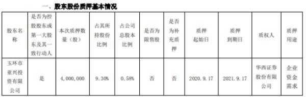 双环传动控股股东亚兴投资质押400万股 用于企业资金需求