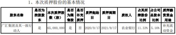 广汇物流控股股东广汇集团质押6500万股 用于补充流动资金