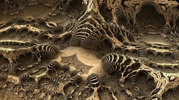 新发现:一亿年前河豚化石黏液或将改变脊椎动物家谱