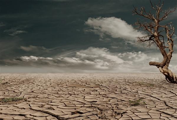研究发现:气候变暖加剧了美国部分地区的夏季干旱