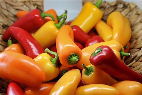 美国宇航局将在太空种植辣椒