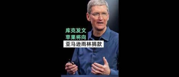 这波很强!苹果捐款修复雨林 库克:火灾让我很悲痛