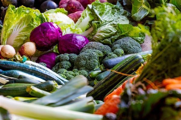 富含蔬菜的饮食通过提高好胆固醇 可降低多发性硬化症...
