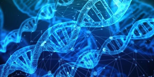 宫颈癌治愈了!科学家使用基因编辑技术:100%治愈了患病小鼠
