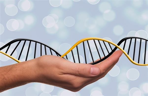 科学家发现DNA中寿命时钟:人类自然寿命是38岁