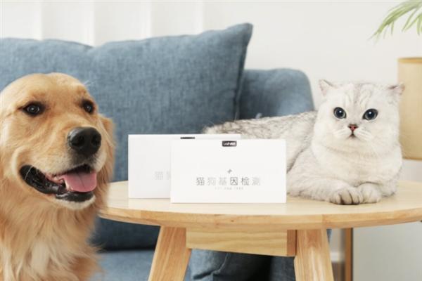 小米有品众筹猫狗基因检测:宠物血统一目了然